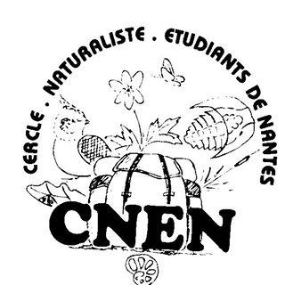 Logo CNEN